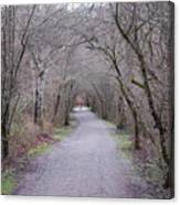 Trail Tunnel Canvas Print