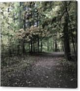 Trail Walking  Canvas Print