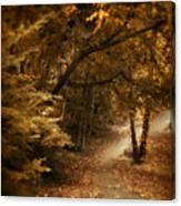 Trailing Autumn Canvas Print