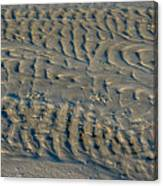 Trails In The Sand Canvas Print