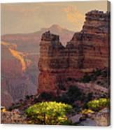 Trailside Canvas Print