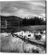Tranquil Black And White 5 Canvas Print