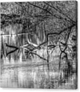 Tranquil May 2016 Bw Canvas Print