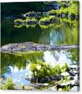 Tranquil Pond Canvas Print