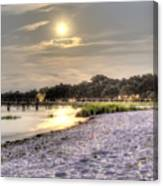 Tranquil Southern Night Canvas Print