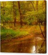 Tranquility Stream - Allaire State Park Canvas Print