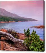Tranquillity At Dawn Canvas Print