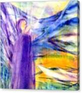 Transformational Peace Canvas Print