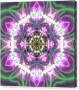 Transition Flower 6 Beats 3 Canvas Print