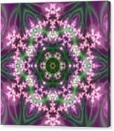 Transition Flower 6 Beats 4 Canvas Print