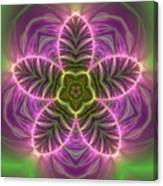 Transition Flower Canvas Print