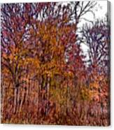 Transitions - Painterly Canvas Print