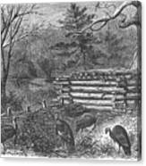 Trapping Wild Turkeys, 1868 Canvas Print