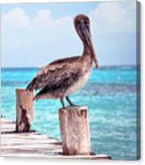 Treasure Coast Pelican Pier Seascape C1 Canvas Print
