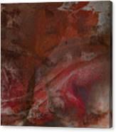 Treasures In Autumn Canvas Print