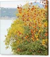 Tree 010 Canvas Print