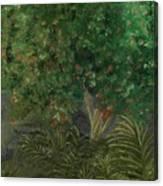 Tree Against The Rocks Canvas Print