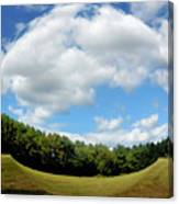Tree And Blue Sky Canvas Print