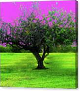 Tree And Color Canvas Print