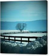 Tree And Fence In Snow Canvas Print