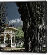 Tree And Gazebo Canvas Print