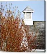 Tree And School House 795 Canvas Print