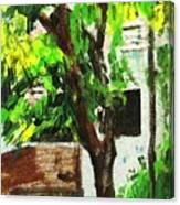 Tree And Shade Canvas Print