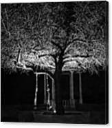 Tree And Swing Canvas Print