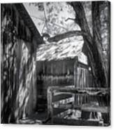 Tree And The Barn Canvas Print