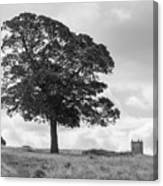 Tree And The Cage Tower In The Distance In Lyme Park Estate In B Canvas Print