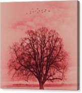 Tree Art 01 Canvas Print