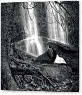 Tree At Falls In Black And White Canvas Print