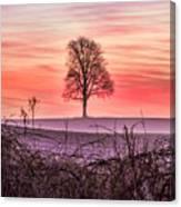 Tree At Sunrise Eaton Rapids Canvas Print