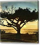 Tree At Vacation Island Canvas Print