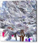 Tree Branches Covered By Snow  Canvas Print
