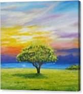Tree By The Beach Canvas Print