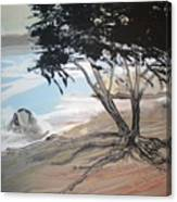 Tree By The Sea By Betty Canvas Print