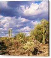 Tree Cactus Canvas Print