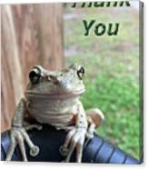 Tree Frog Thank You Canvas Print