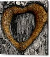 Tree Graffiti Heart Canvas Print