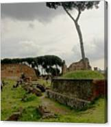 Tree In Ancient Rome Landscape Canvas Print