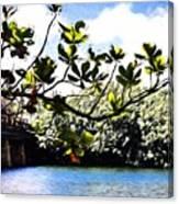 Tree Limb Over Water 2 Canvas Print