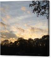 Tree Line And Clouds Canvas Print