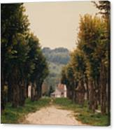 Tree Lined Pathway In Lyon France Canvas Print