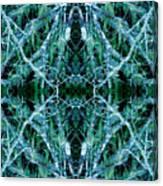 Tree Moss Mandala Canvas Print