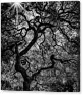Tree Noir Canvas Print