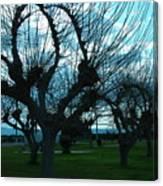 Tree Of Art Canvas Print