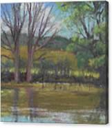 Tree Of Life Landscape Canvas Print