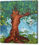 Tree Of Plenty Canvas Print