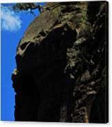 Tree On A Cliff At Battleship Rock New Mexico - 003 Canvas Print